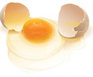 【科技】吃蛋黄同抽烟一样危害心血管健康